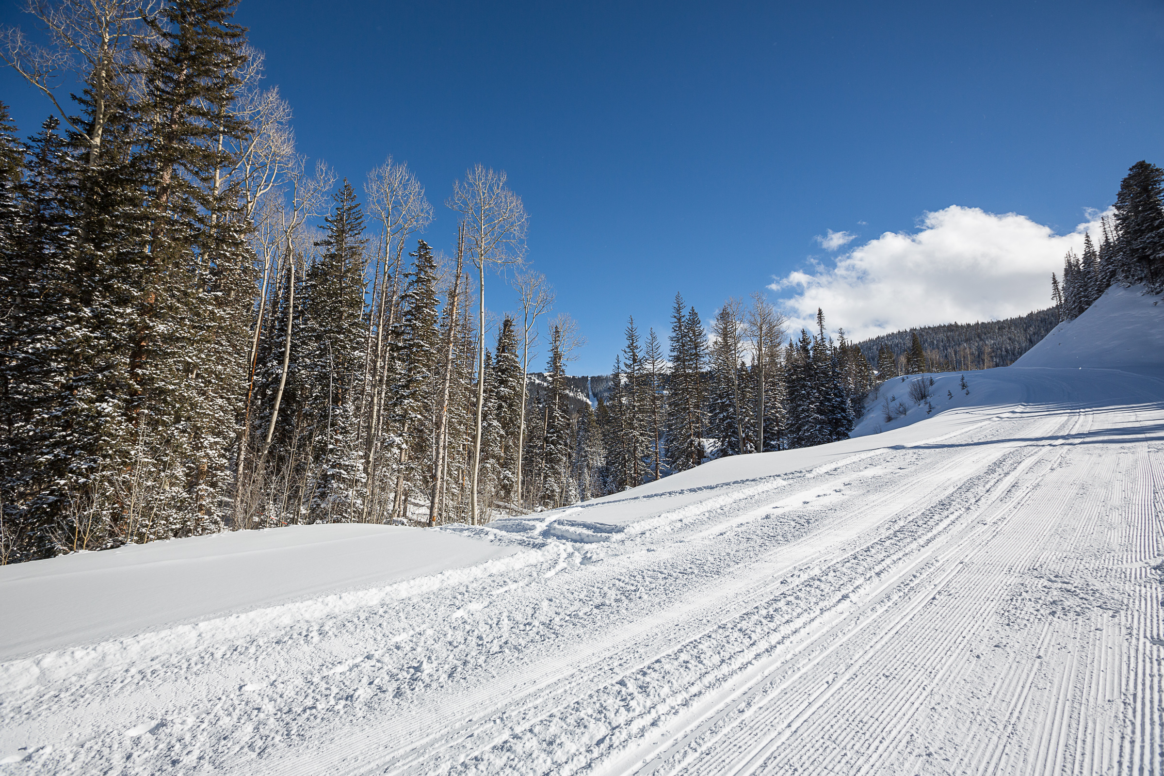 Extraordinary Property of the Week - Ski In/Ski Out Lot 926R on Upper Sundance Ski Trail